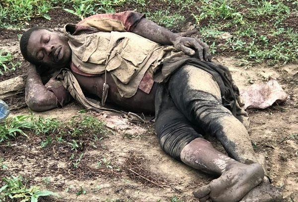 Police Investigates Mole Park Elephant Shooting