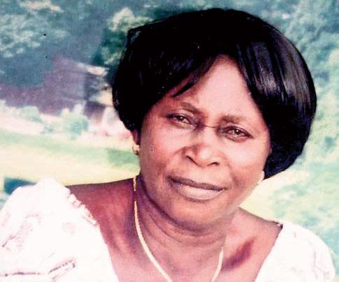Woman, 75, In Bizarre Bulldozer Death
