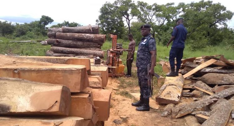 5 Arrested With Rosewood In Salaga