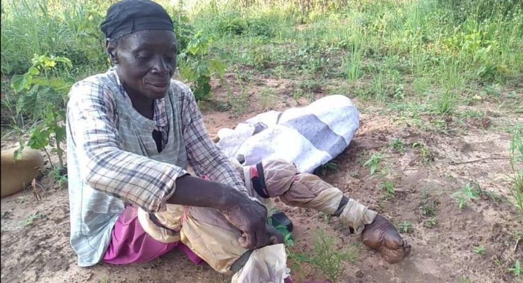A 60 Years-Old Disabled Woman Who Farms To Cater For Herself And Kids