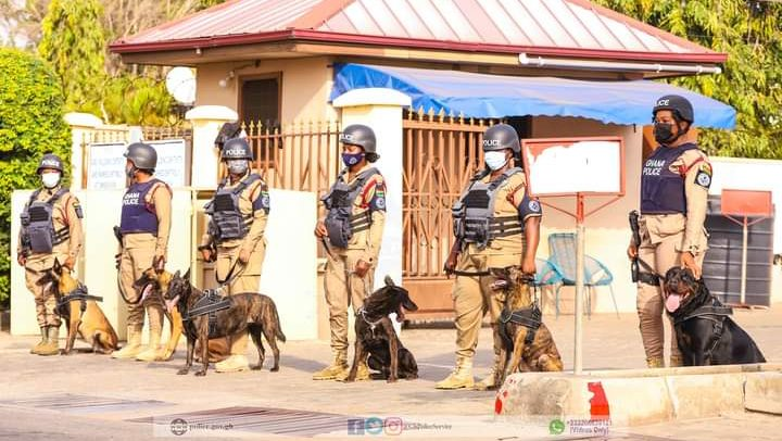 Police Fights Crime With Dogs